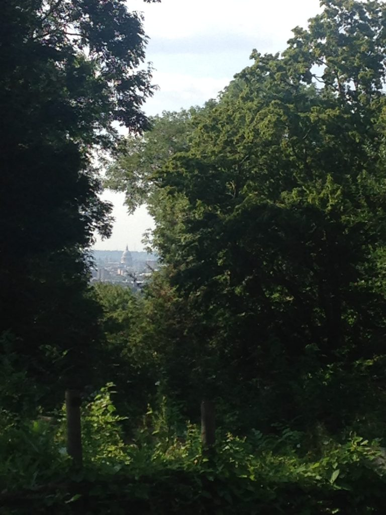 St Paul's from Nunhead Cemetery